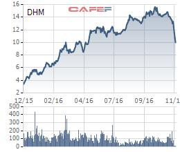 Diễn biến DHM 1 năm qua