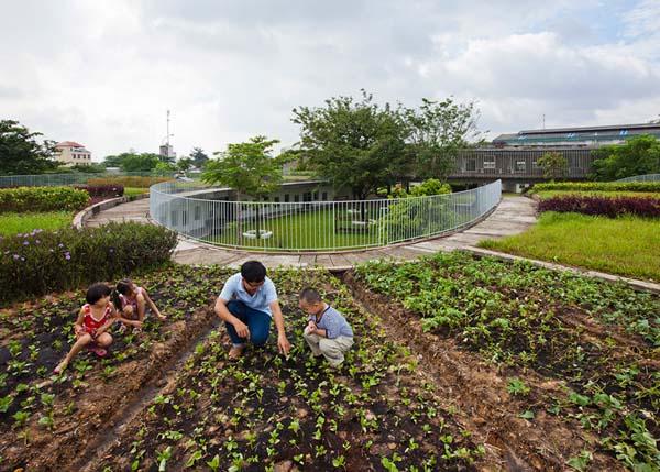 Với không gian rộng, xanh mát, trên mái nhà còn được trồng rau sạch cung cấp nguồn thực phẩm sạch cho các con hàng ngày.