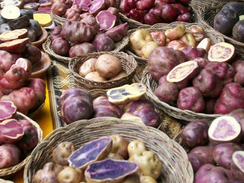 Hình ảnh khoai tây được bày bán tại một gian chợ ở Cusco, Peru.