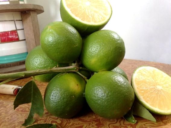 Chanh tươi là một nguồn cung cấp vitamin C vô cùng dồi dào