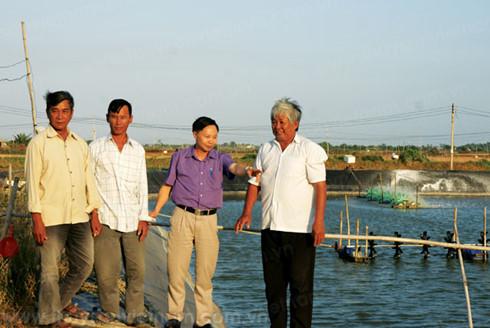 Ông Tăng Văn Tuối giới thiệu mô hình nuôi tôm ở HTX Hòa Nghĩa.(Ảnh: TTKNQG)