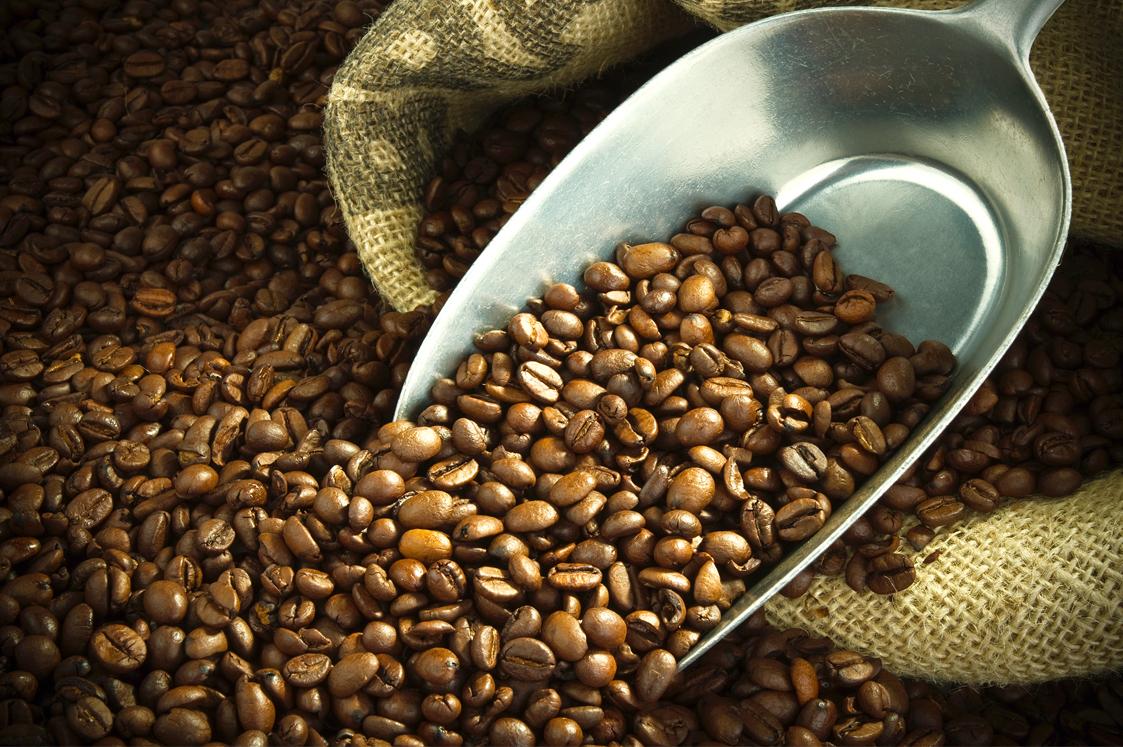 Cung cà phê thế giới sắp khan hiếm chưa từng thấy