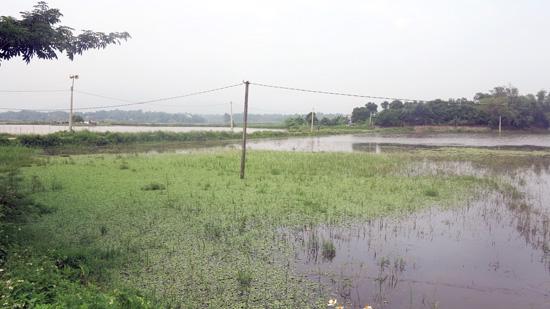 Huyện Cẩm Khê, Phú Thọ: Ngao ngán với dự án 8 năm chưa xong - Ảnh 1.