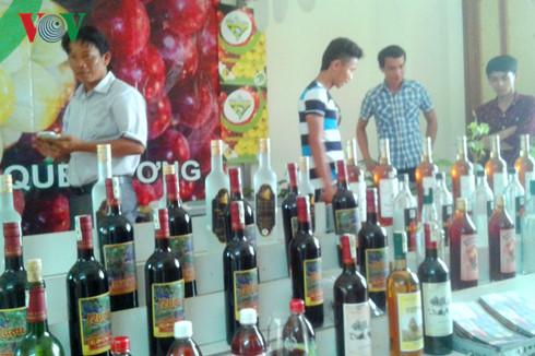 Sản xuất rượu vang nho của tỉnh Ninh Thuận đang ở quy mô nhỏ, đầu tư công nghệ còn hạn chế