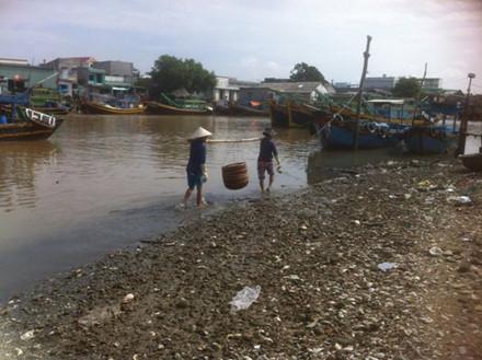 Công nhân gánh tôm nguyên liệu xuống sông để rửa trước khi đưa vào chế biến