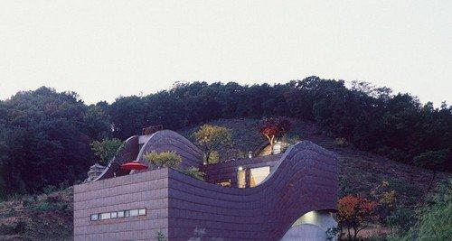 Ngôi nhà rất ấn tượng với phần mái cong mềm mại. Không những thế còn rất đặc biệt với nhiều cây xanh trên mái.