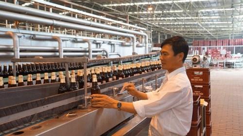 Cổ phiếu Habeco cháy hàng và được nhà đầu tư săn lùng ráo riết trong phiên giao dịch đầu tiên trên sàn UPCoM. Trong ảnh: Dây chuyền sản xuất bia của Habeco. Ảnh: Như Ý.