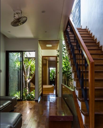 Cây to được trồng vươn lên những tầng trên lấy bóng mát và lọc không khí cho ngôi nhà.