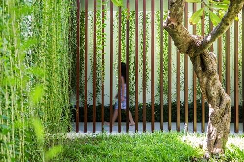 Giàn dây leo tạo nên không gian đầy sức sống và còn mang giá trị thẩm mỹ tuyệt đẹp cho ngôi nhà.