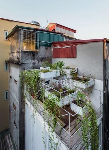 Khu vực mái nhà được thiết kế với một khu vườn nhỏ trồng nhiều cây xanh được tưới nước tự động.