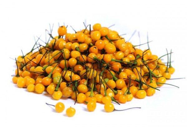 Không chỉ đắt đỏ mà ớt Aji Charapita còn rất khó mua.(Nguồn: O.C)