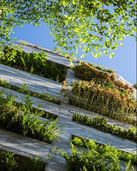 Mặt tiền ngôi nhà được thiết kế với những ô thoáng trồng nhiều cây xanh giúp ngăn khói bụi và tiếng ồn từ đường phố vào nhà.