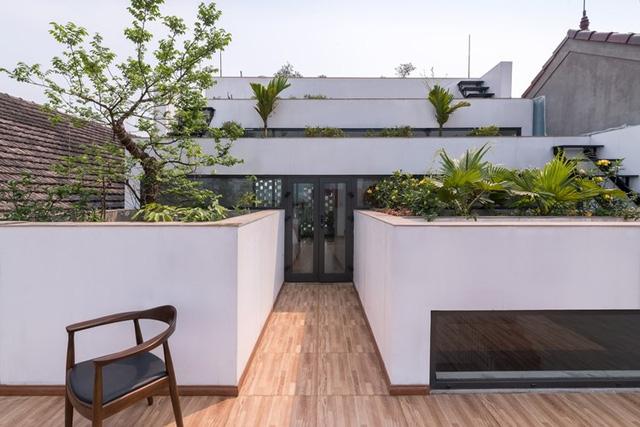 Với những khu vườn trải dài trên mái chủ nhà có thể thoải mái trồng cây cảnh, rau xanh phục vụ cho nhu cầu rau sạch hàng ngày trong gia đình.