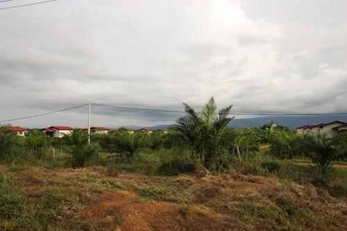 Ngôi làng của công nhân Việt đang làm việc cho Hoàng Anh Gia Lai ở Attapeu nhìn từ xa như khu nghỉ dưỡng cao cấp tại các vùng quê yên bình. Ảnh: Nghi Điền.