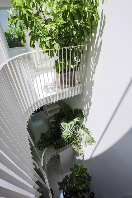 Độ rộng giếng trời tùy thuộc vào diện tích khu đất. Nhà càng cao thì giếng trời càng phải rộng. Việc thiết kế giếng trời cho ngôi nhà cần đảm bảo an toàn cho người sử dụng, phải có lan can rào chắn ….