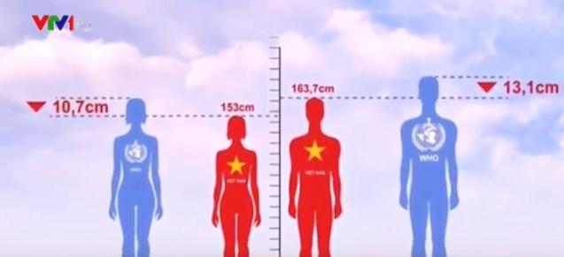 Hình ảnh so sánh chiều cao nam và nữ Việt Nam so với mức trung bình của WHO. Ảnh cắt từ clip.