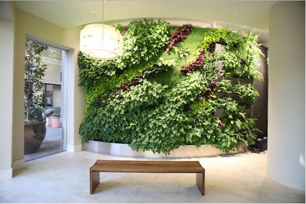 Mỗi ngày ngôi nhà bạn sẽ có những luồng sinh khí mới do năng lượng sống từ bức tường cây mang lại.