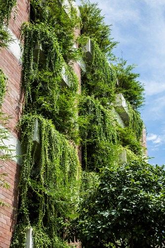 Cây xanh góp phần tạo cho du khách cảm giác gần gũi hơn với thiên nhiên, lọc không khí và giảm tiếng ồn.