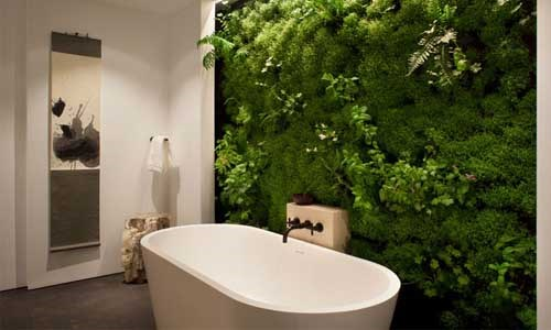 Bức tường cây xanh trong nhà vừa giúp làm đẹp không gian sống, vừa đem lại cảm giác mát mẻ, thư giãn.