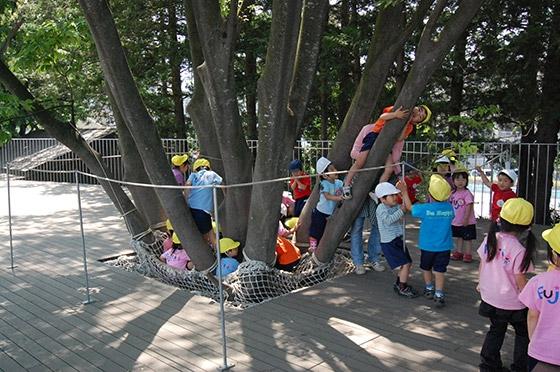 Một góc cây cối rất được các em học sinh yêu thích.