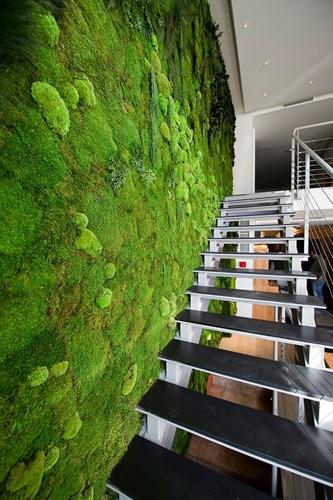 Nó có thể được bố trí bất kỳ đâu thậm chí là nhà tắm, hay dọc lối cầu thang dẫn lên tầng.