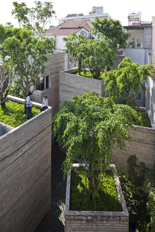 Cây xanh trồng trên mái và cách bố trí các lăng trụ giúp cho 5 khối nhà đều có thể mở cửa sổ giúp không gian bên trong luôn thoáng sáng, mát mẻ.
