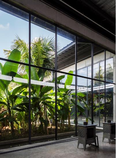 Xung quanh nhà máy nơi đâu cũng được trồng rất nhiều cây xanh.