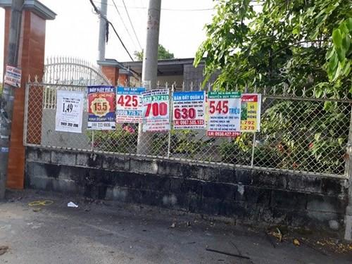 Những ngôi nhà được rao bán với giá chỉ từ 3 tới 5 triệu đồng/m2.