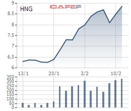 HAG, HNG tăng phi mã trong 1 tháng qua