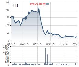 Biến động giá cổ phiếu TTF 1 năm qua