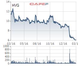 Cổ phiếu HVG đã bật tăng trần trong ngày 14/3
