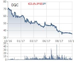 Bóng Đèn Điện Quang (DQC) tiếp đà sa sút, lợi nhuận 9 tháng chưa bằng 1/2 cùng kỳ năm trước - Ảnh 1.