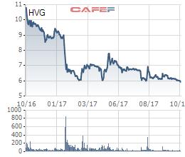 Diễn biến cổ phiếu HVG trong vòng 1 năm