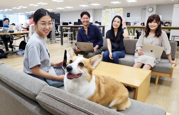 Mang thú cưng tới nơi làm việc đang ngày càng trở nên phổ biến ở Nhật Bản.