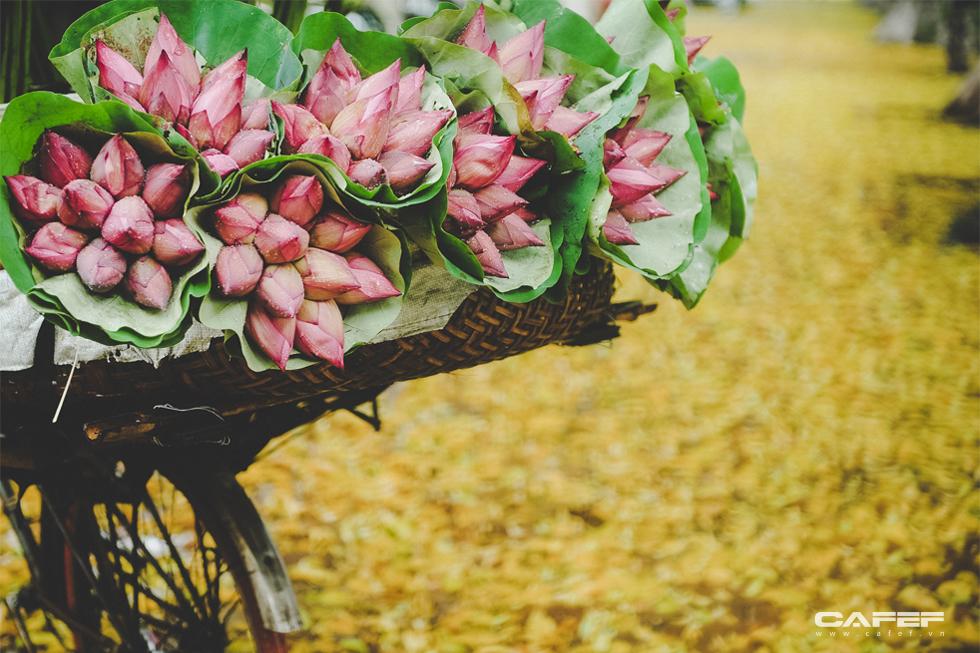 Chẳng phải tự nhiên người ta yêu Hà Nội đến thế, đẹp lạ lùng từ cảnh sắc đến con người như này đây - Ảnh 4.