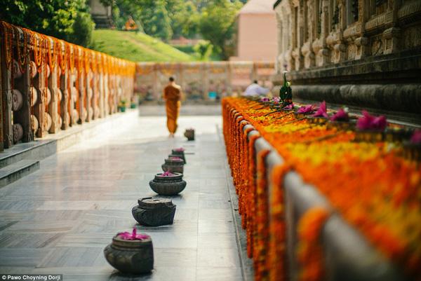Hoa sen hồng tượng trưng cho những vị thần ở ngôi cao nhất theo tín ngưỡng Bhutan, sen trắng dành cho đức Phật.