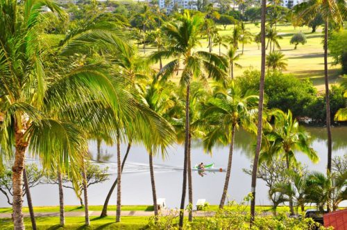 Đảo dứa của Hawaii