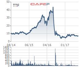 Scandal liên quan đến số liệu tài chính cách đây hơn 1 năm đã khiến TTF mất hơn 80% vốn thị trường