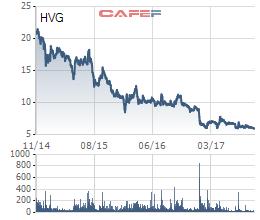 Cổ phiếu HVG giảm liên tục trong 3 năm qua