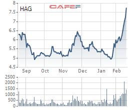Cổ phiếu HAG tăng gần 60% trong 1 tháng qua