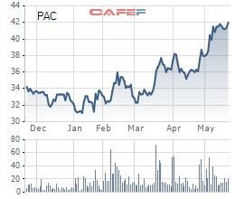 Biến động giá cổ phiếu PAC trong 6 tháng qua
