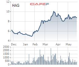 Cổ phiếu HNG và HNG tăng mạnh trong 6 tháng qua