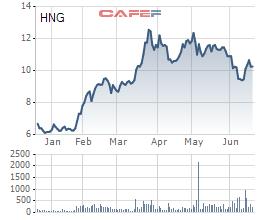 Biến động giá cổ phiếu HNG trong 6 tháng