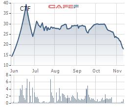 City Auto (CTF): Giá xe xuống thấp, doanh thu đạt gần ngàn tỷ, lãi chưa đến 1 tỷ - Ảnh 1.