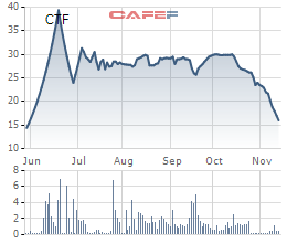 Giá cổ phiếu CTF của nhà phân phối xe Ford-City Auto giảm một nửa trong 1 tháng