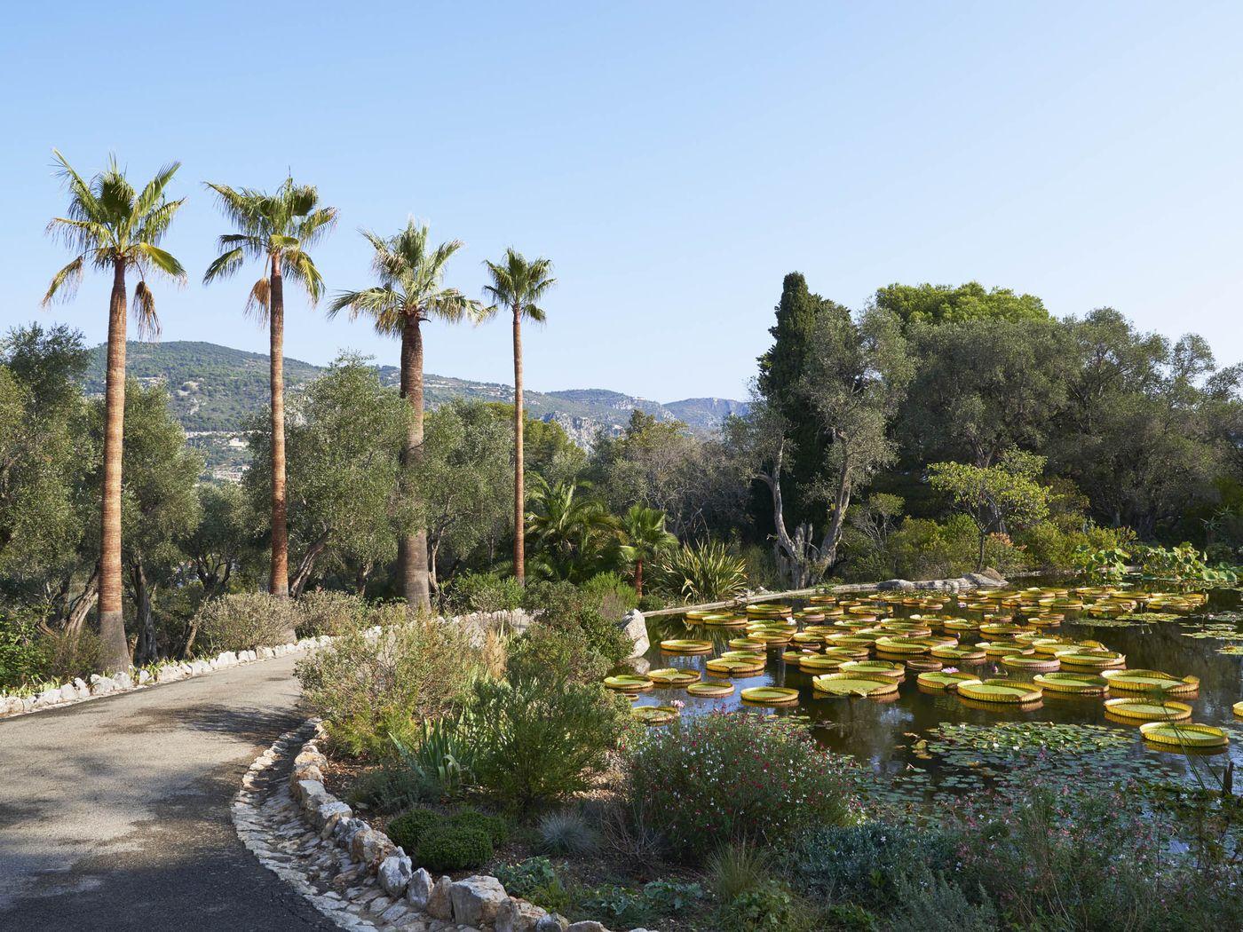 Hồ nước nằm trong khu vườn thực vật nhìn ra biển Địa Trung Hải tại Villa Les Cedres.