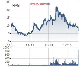 Biến động giá cổ phiếu HVG từ khi niêm yết