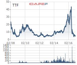 Cổ phiếu TTF đã giảm không phanh trong năm 2016