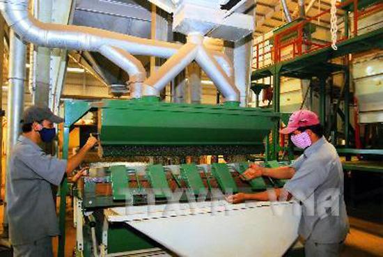Chế biến cà phê nhân xuất khẩu tại Công ty cà phê An Giang, thành phố Buôn Ma Thuột(Đắk Lắk). Ảnh: Hồng Kỳ/TTXVN