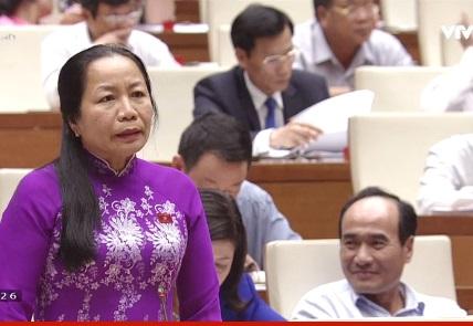 [Live] Chất vấn Bộ trưởng NN&PTNT: Đại biểu chất vấn khi nào thì giải quyết được tình trạng nay trồng, mai chặt? - Ảnh 1.